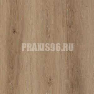 fp954_dub_tirolskiy